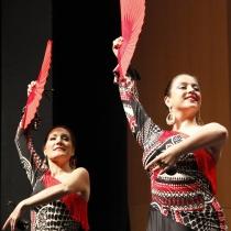 flamenco_virginiabolufer